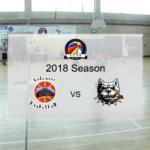 Volcanic vs Terra Branca Pitbulls – ACVB 2018 Season